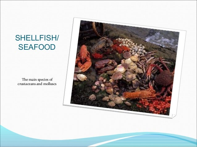 SHELLFISH/SEAFOODThe main species ofcrustaceans and molluscs