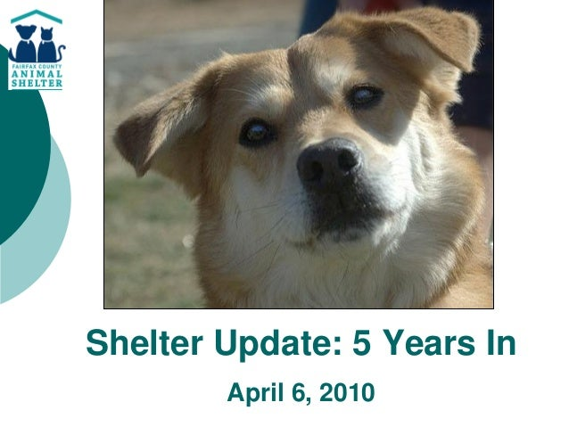 Shelter Update: 5 Years In        April 6, 2010