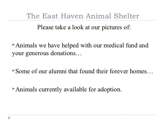 The East Haven Animal Shelter           Please take a look at our pictures of:Animals we have helped with our medical fun...