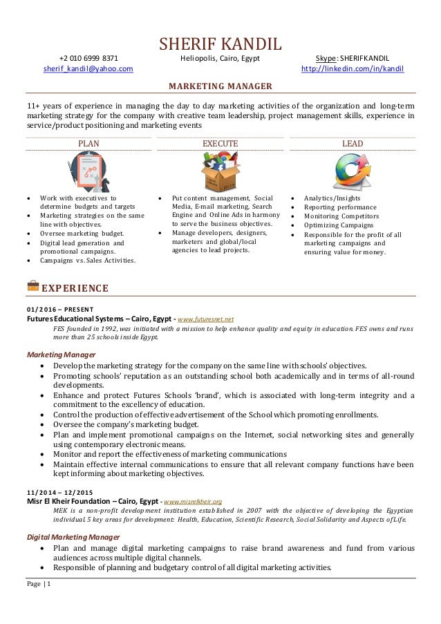 Professional Cv For Marketing Manager