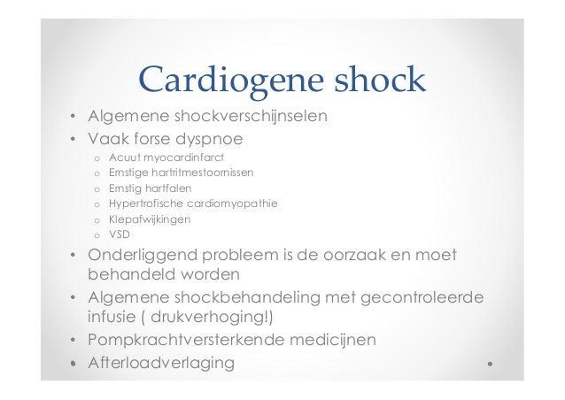 ocd hond symptomen