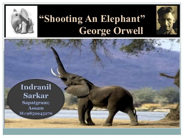 shooting an elephant thesis sentence An elephant conclusion analysis shooting essay george orwell  katrina yourself  respected, math models applications homework help, thesis statement on.