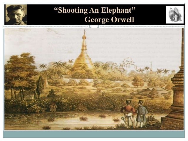 an analysis of sympathy in shooting an elephant by george orwell In george orwell's shooting an elephant  even though george orwell did not actually hate the burmese but felt sympathy  the shooting of the elephant is.