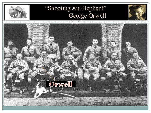 symbolism in orewlls shooting an elephant Thesis statement (shooting an elephant) 1/ human nature says that sometimes in order to establish your position within community george orwell shot the elephant because he wanted to feel accepted, which is something common to human nature.