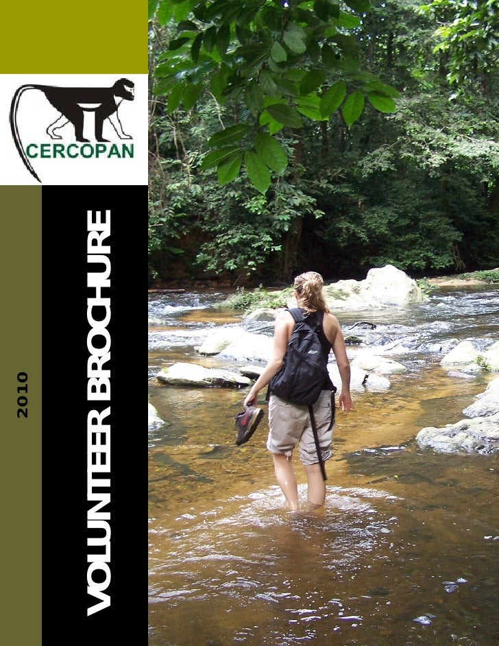 Short Term Volunteer Brochure 2010