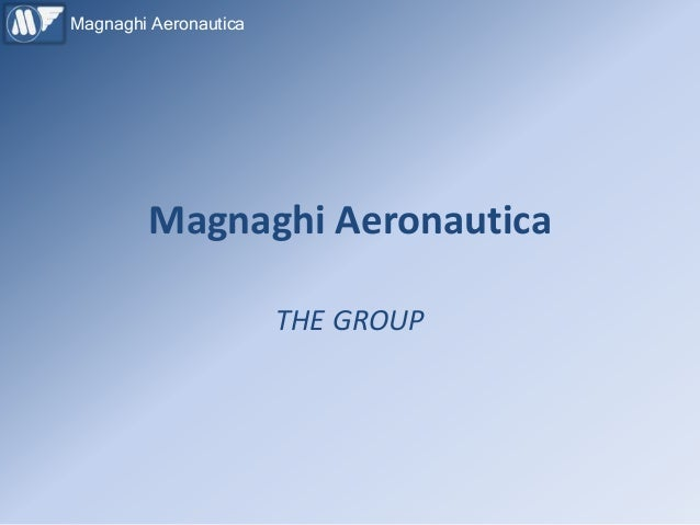 Magnaghi Aeronautica        Magnaghi Aeronautica                       THE GROUP