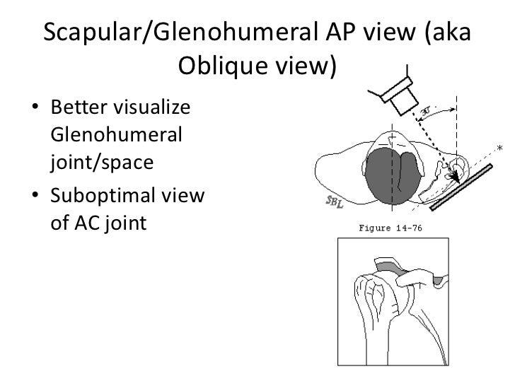 Scapular/glenohumeral ap View