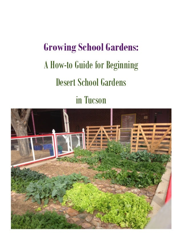 Growing School Gardens in the Desert