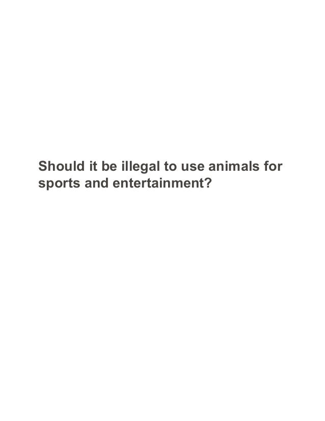 Animals Should Be Used In Scientific Research Essay