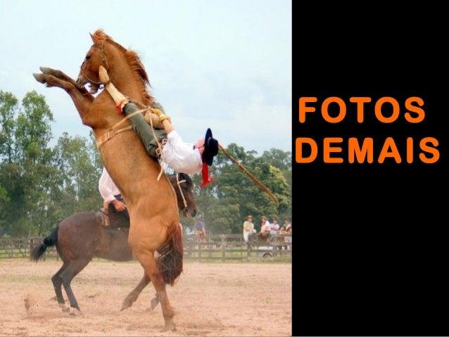 FOTOS DEMAIS