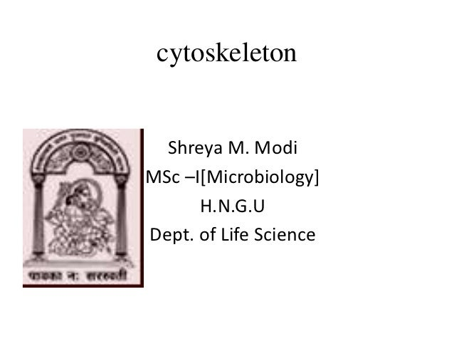 cytoskeleton  Shreya M. ModiMSc –I[Microbiology]      H.N.G.UDept. of Life Science