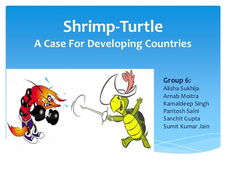 Shrimp-TurtleA Case For Developing Countries                         Group 6:                         Alisha Sukhija      ...