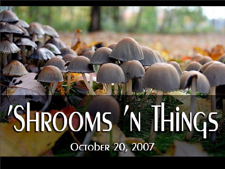 'Shrooms 'n ThingsOctober 20, 2007