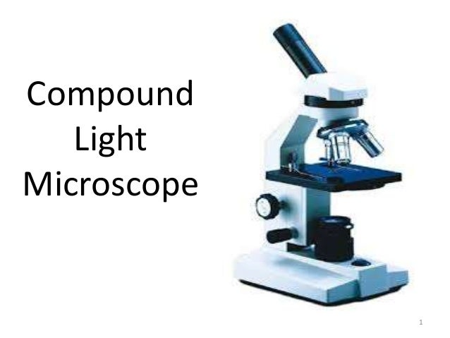 using a compound light microscope A compound microscope is available for each student's use remember at all times that your microscope is a precision optical instrument and must be handled carefully when removing the microscope from its storage cabinet, do not jar or drop it, always carry it upright with one hand below the base and the.