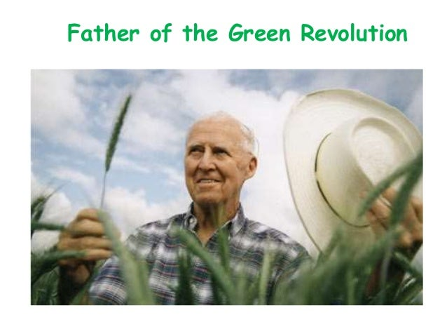 short essay on green revolution in india The green revolution, an initiative to encourage the use of high yielding  india  wanted to be self – sufficient in providing food for the large growing nation.