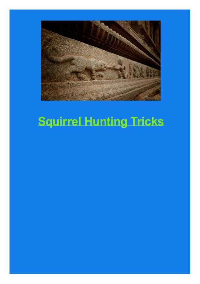 Squirrel Hunting Tricks