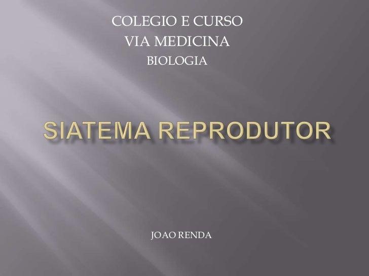 Sistema Reprodutor Masculino e Feminino