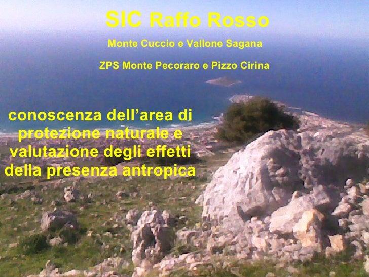 SIC  Raffo Rosso Monte Cuccio e Vallone Sagana   ZPS Monte Pecoraro e Pizzo Cirina   conoscenza dell'area di protezione na...