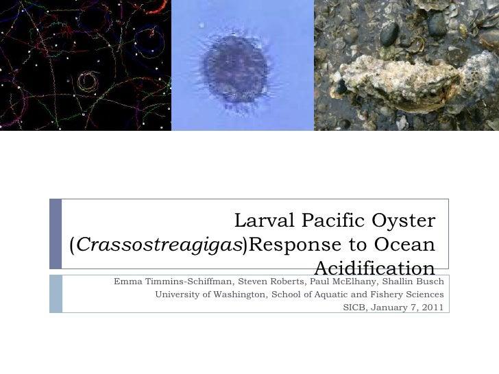 Larval Pacific Oyster (Crassostreagigas)Response to Ocean Acidification Emma Timmins-Schiffman, Steven Roberts, Paul McElh...