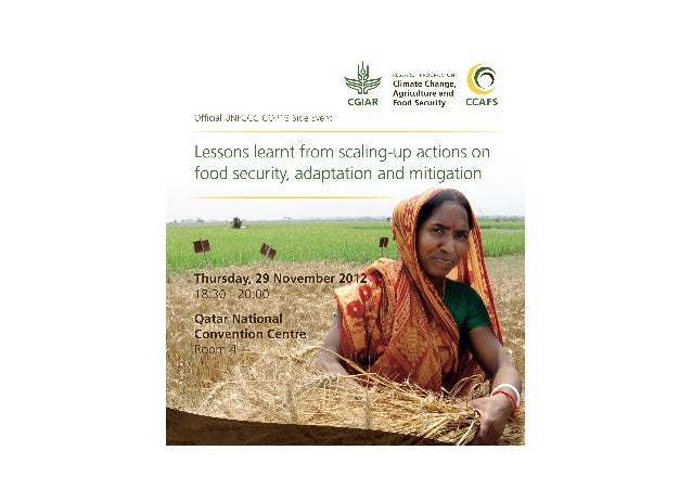 Lessons learnt from scaling-up actions on food security, adaptation and mitigation