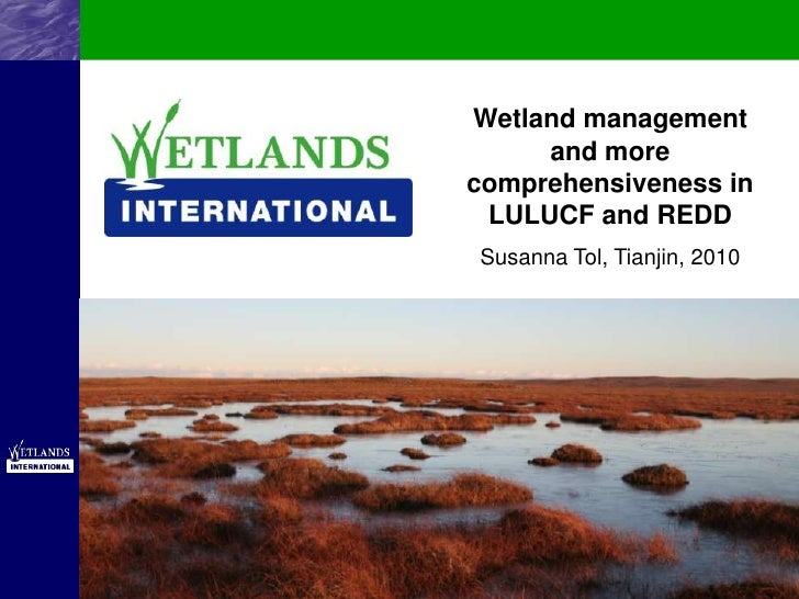 Wetland management and more comprehensiveness in LULUCF and REDD -Side event presentation Wetlands International in Tianjin (5-10-2010)