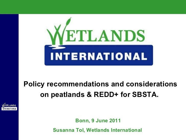 Bonn, 9 June 2011 Susanna Tol, Wetlands International  Policy recommendations and considerations on peatlands & REDD+ for ...