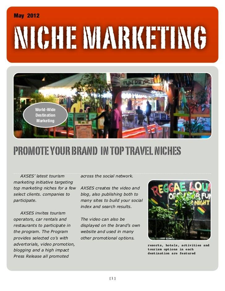 SocialIndexEngine Niche Marketing Websites