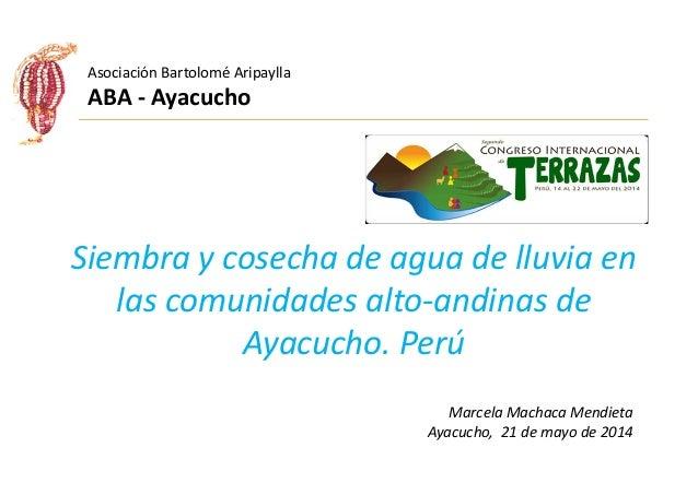 Siembra y cosecha de agua de lluvia en las comunidades alto-andinas de Ayacucho. Perú Marcela Machaca Mendieta Ayacucho, 2...