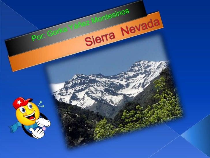  1) Situación, extensión y limites. 2) Formación y geología. 3) Glaciarismo. 4) Lagunas. 5) Climatología. 6) Vegetac...