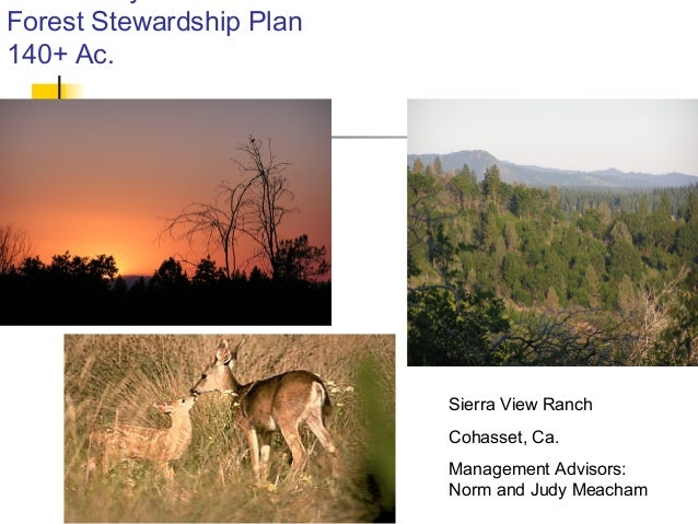 01/28/15 Forest Stewardship Plan 140+ Ac. Sierra View Ranch Cohasset, Ca. Management Advisors: Norm and Judy Meacham