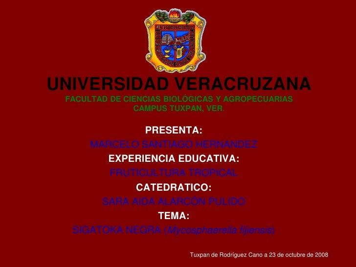 UNIVERSIDAD VERACRUZANAFACULTAD DE CIENCIAS BIOLÓGICAS Y AGROPECUARIASCAMPUS TUXPAN, VER. PRESENTA: MARCELO SANTIAGO HERNA...