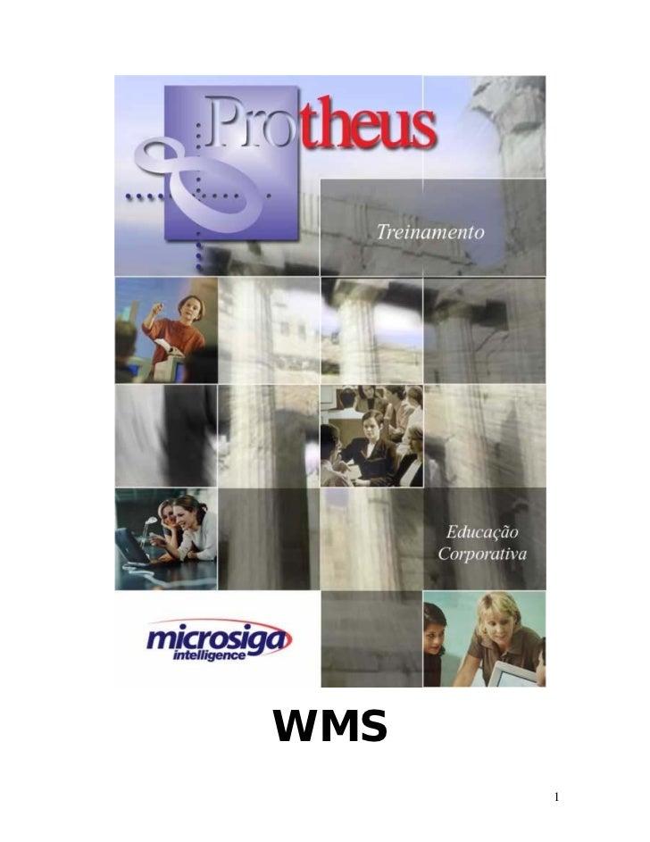 WMS       1