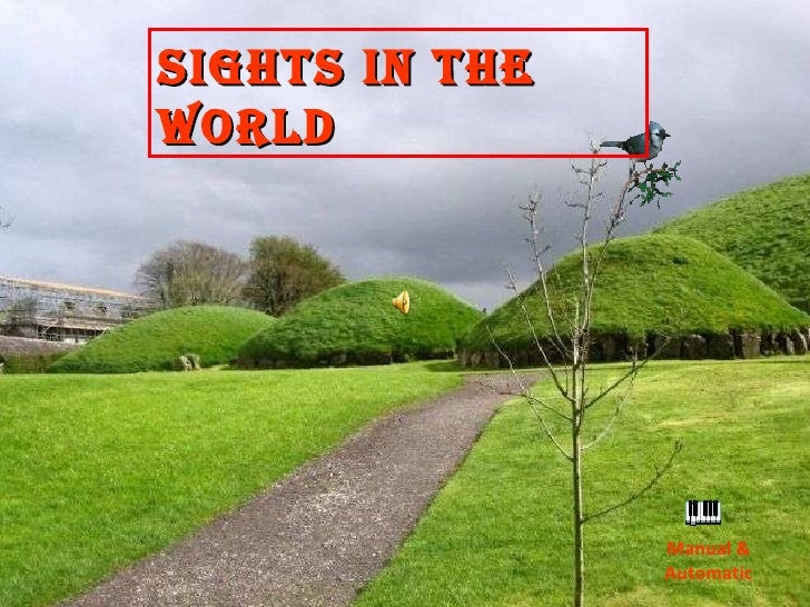 Manual & Automatic Sights in the World