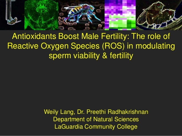 Antioxidants Boost Male Fertility: The role ofReactive Oxygen Species (ROS) in modulating           sperm viability & fert...