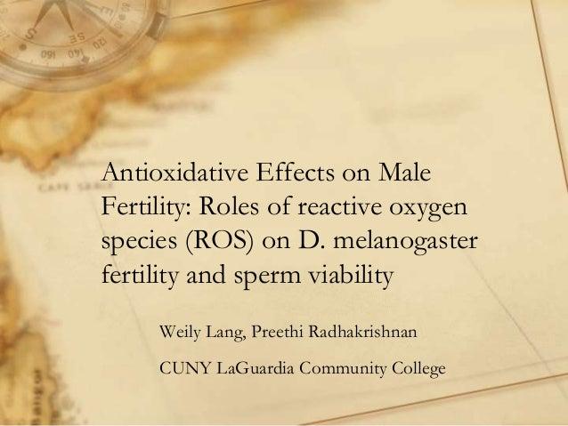 Antioxidative Effects on MaleFertility: Roles of reactive oxygenspecies (ROS) on D. melanogasterfertility and sperm viabil...