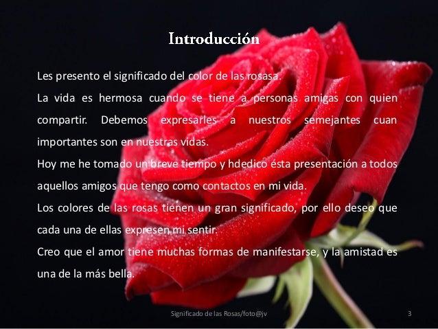 Significado de las rosas - Significado de las rosas rosas ...