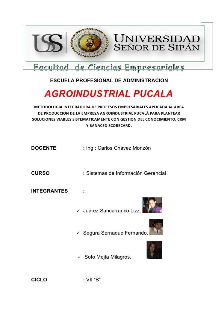 ESCUELA PROFESIONAL DE ADMINISTRACION       AGROINDUSTRIAL PUCALA  METODOLOGIA INTEGRADORA DE PROCESOS EMPRESARIALES APLIC...