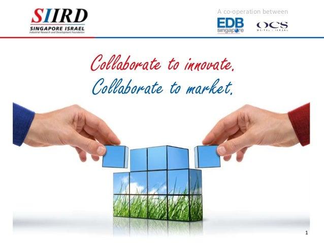 Siird presentation slides 2012