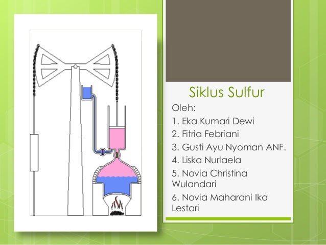Siklus sulfur