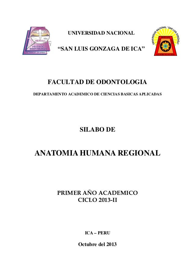 Silabo anatomia regional 2013 pdf