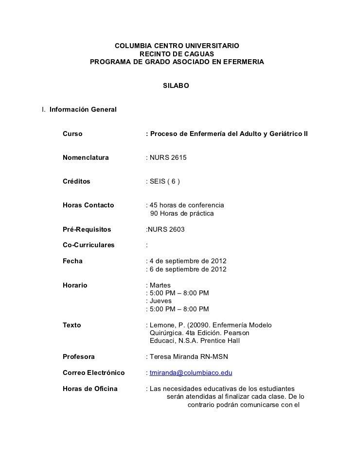 Silabo nurs 2615 sept dic-2012