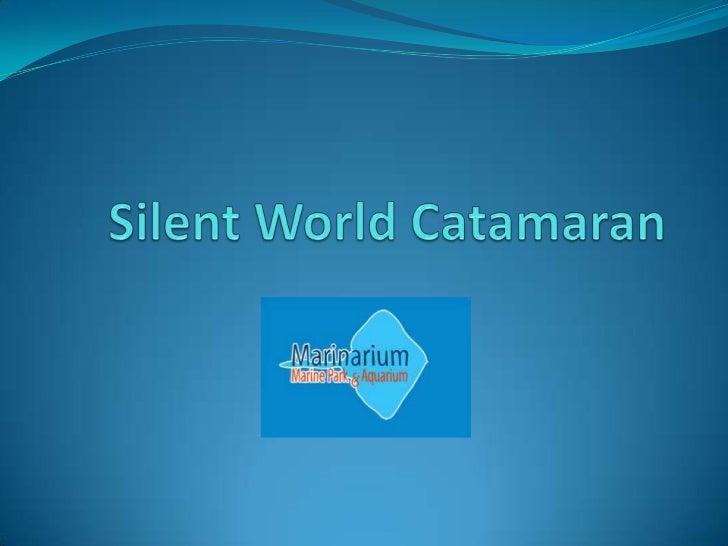Silent world catamaran