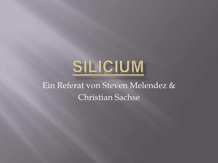 Ein Referat von Steven Melendez &         Christian Sachse