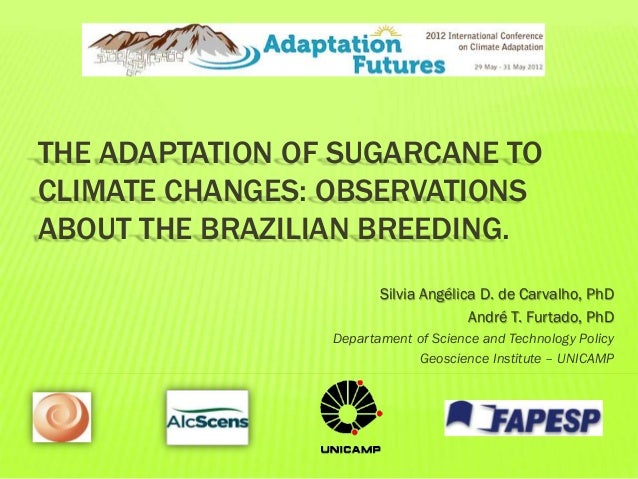 THE ADAPTATION OF SUGARCANE TOCLIMATE CHANGES: OBSERVATIONSABOUT THE BRAZILIAN BREEDING.Silvia Angélica D. de Carvalho, Ph...