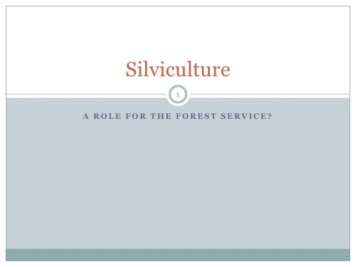 A Role for the Forest Service?<br />Silviculture<br />1<br />