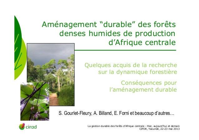 """La gestion durable des forêts d'Afrique centrale - Hier, aujourd'hui et demainCIFOR, Yaoundé, 22-23 mai 2013Aménagement """"d..."""