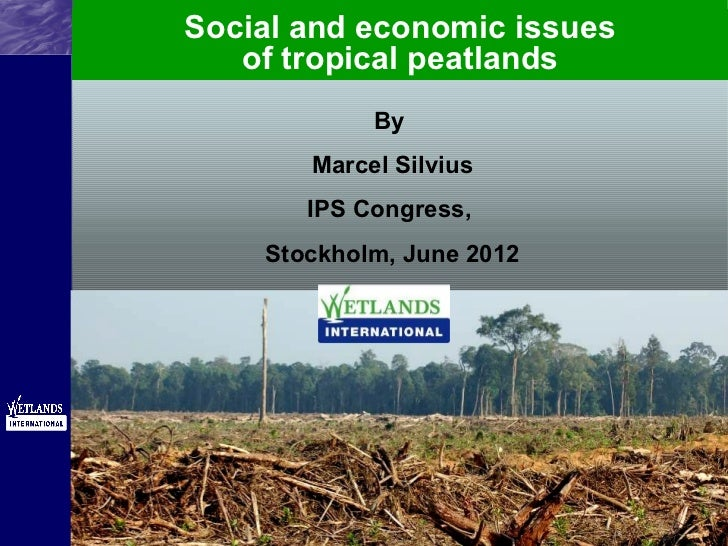 Social and economic issues of tropical peatlands