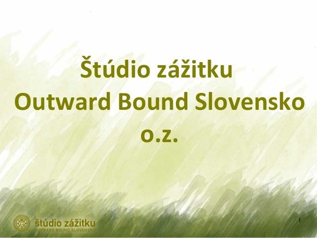 Simoncicova   studio zazitku - ucime pre zivot 2013