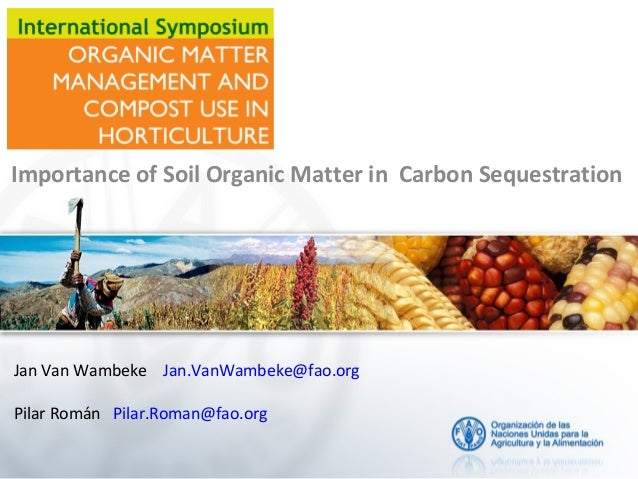 International Symposium 2013 ISHS. Organic matter and carbon sequestration