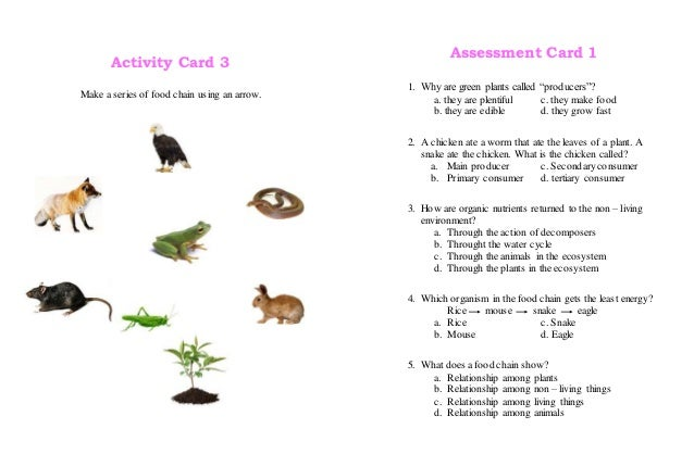 living things and their environment worksheets